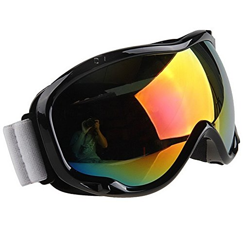 UTV Goggles