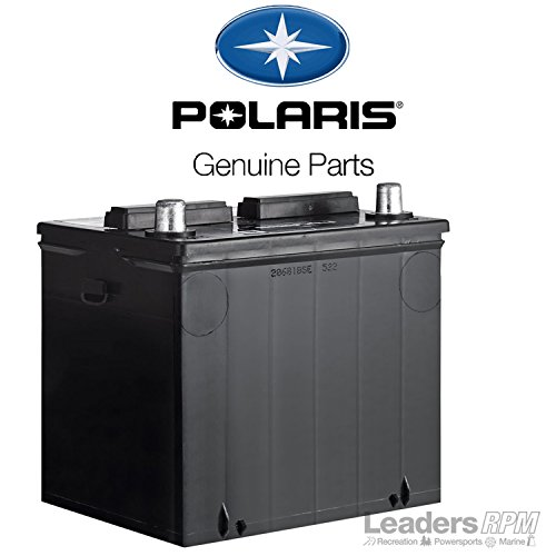 Polaris Brutus